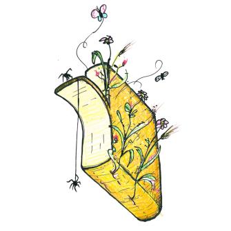 Raclette Käse Wildkräuter Scheibe, 90g